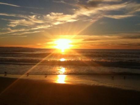 Marina State Beach 11-26-14