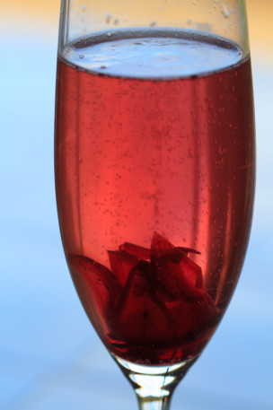 Wild hibiscus flower in champagne with syrup
